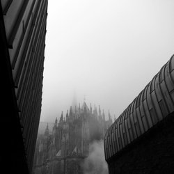 Foggy morning in Cologne